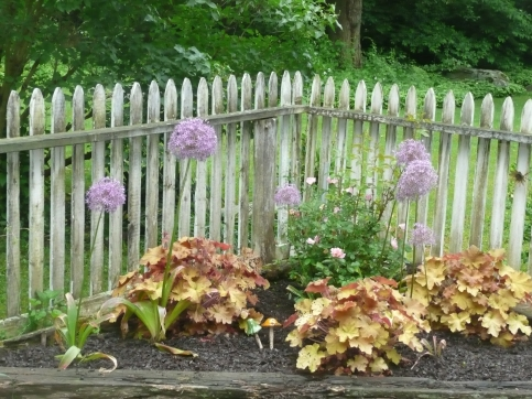 May & June 2010 misc 094